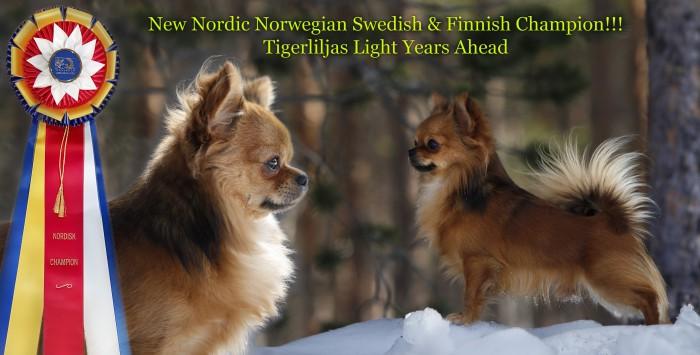 eddies-nordCH